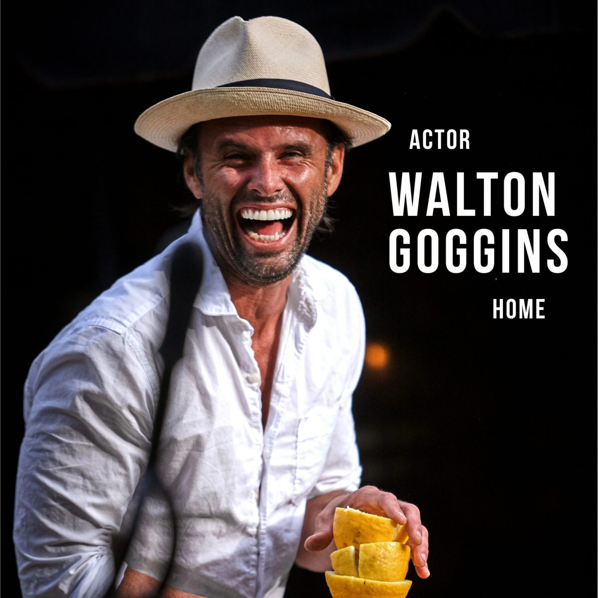 Actor Walton Goggins house in LA
