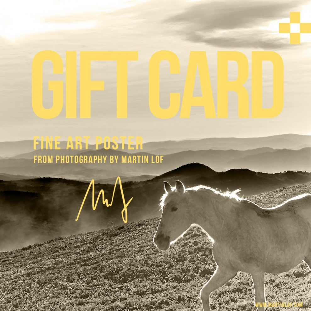 Gift Card - Show Love, get love.